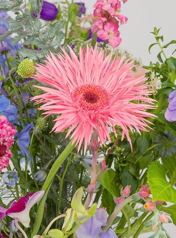 bloemenfee-boeket-samenstellen